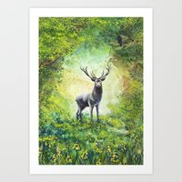 Stag In A Forest Art Print