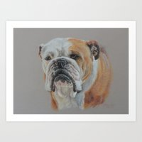 english bulldog Art Prints featuring ENGLISH BULLDOG by Canisart