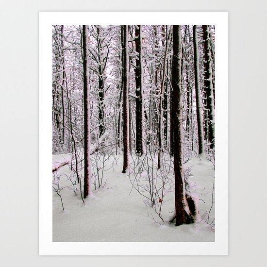 Cold Trees Art Print