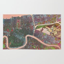 A Map of Vibrant New Orleans Rug