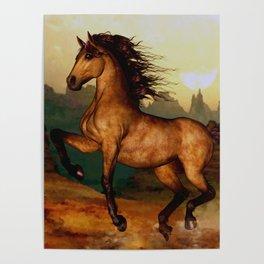 HORSES-Prairie dancer Poster