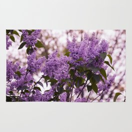 Purple lilacs Rug
