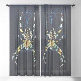 European Garden Spider Sheer Curtain