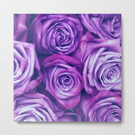 Purple Gothic Roses, Luxurious and Chic Metal Print