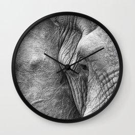 Eye of the elephant Wall Clock