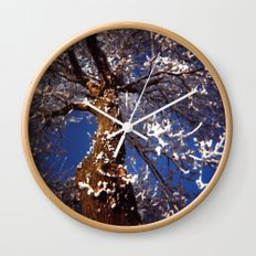Frosty Wall Clock