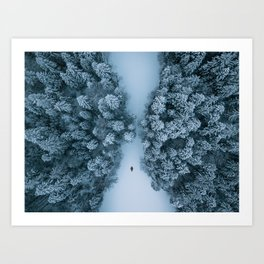 Chilling on a frozen lake in a winter forest  Art Print