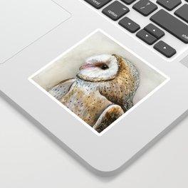 Barn Owl Watercolor, Birds Of Prey Wild Animals Owls Sticker