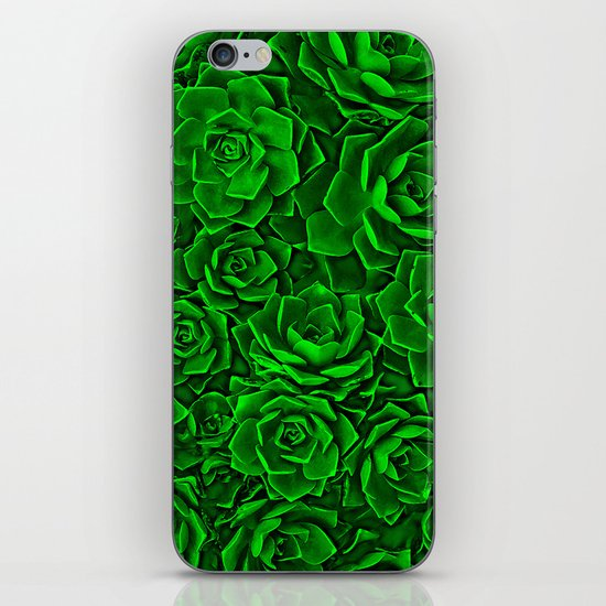 Succulent Green iPhone & iPod Skin