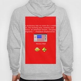 The Plutocracy in America Hoody