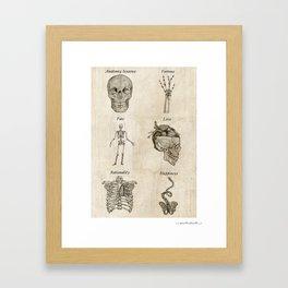 Anatomy lessons Framed Art Print