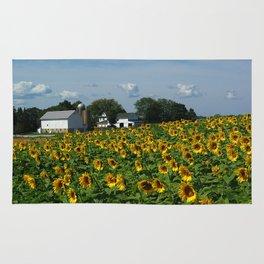 Sunflower Farm  - Pope Farm Conservancy, Wisconsin Rug