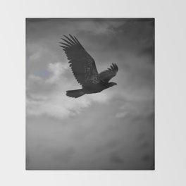 Young Bald Eagle Throw Blanket
