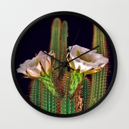 Night Flowers of the Golden Torch Cactus Wall Clock