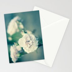 In the Lightroom Stationery Cards
