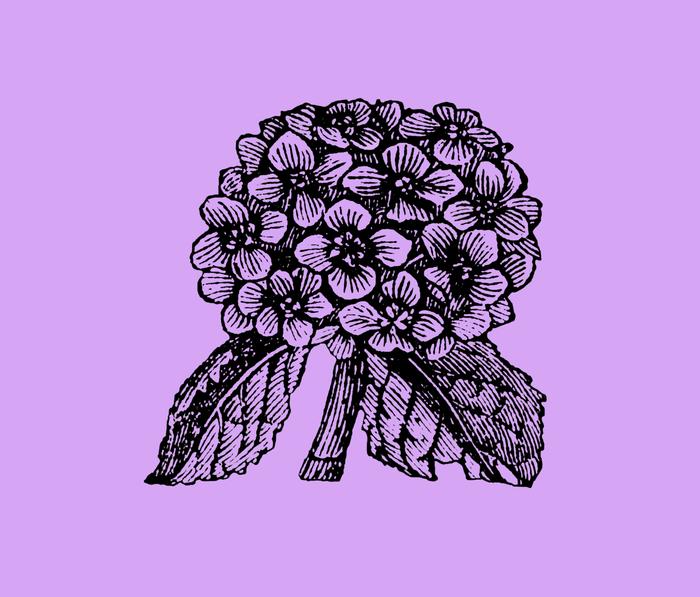 Lavender Hydrangea Metal Travel Mug