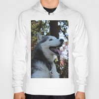 husky Hoodies featuring Husky. by Saremotion