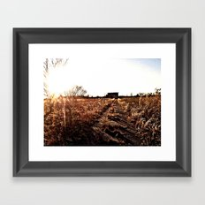 field of dying dreams Framed Art Print