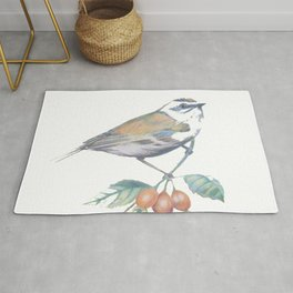 Little Snowbird #bird Rug