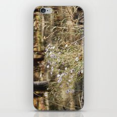 Fall Color with Flowers iPhone & iPod Skin
