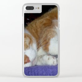 Indy Clear iPhone Case