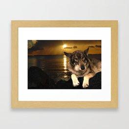 Dog German Shepherd and Sunset Framed Art Print