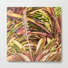 Beautiful Bromeliad Metal Print
