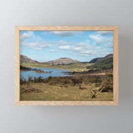 Panoramic shot of wildlife in the mountains with a lake felled trees and a high-voltage line Framed Mini Art Print