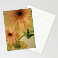 baby-pink daisy-petals ~ flowers Stationery Cards