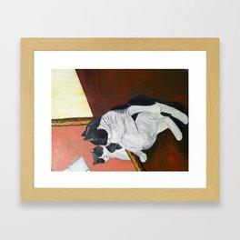 Vanity Kitty  Framed Art Print