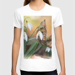 Opposites new and old in the garden T-shirt