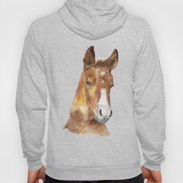Horse Head Watercolor Hoody