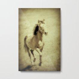 Easy Spirit Metal Print