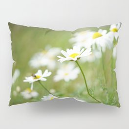 Summer Daisy Pillow Sham