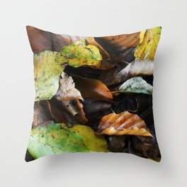 Autumn IV Throw Pillow