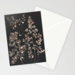 Black Maidenhair Stationery Cards