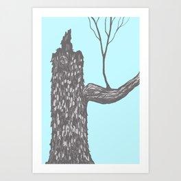 Nut Tree Illustration Art Print