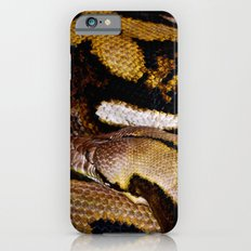 Wrapped Up iPhone 6 Slim Case