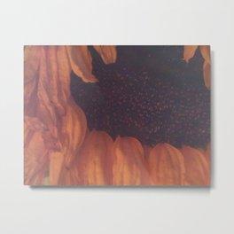 Contemplative Sunflower Metal Print