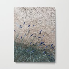 Lavender in France Metal Print