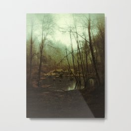Swampy Forest Metal Print