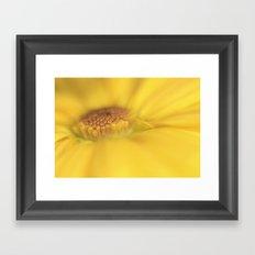 A ray of sunshine Framed Art Print