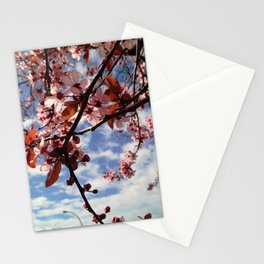 Cherry Blossoms in Spring Stationery Cards
