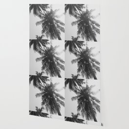 black and white palm trees Wallpaper