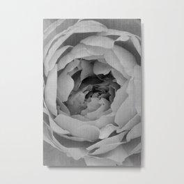 Blak and white rose Metal Print