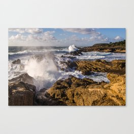 Point Lobos // California Canvas Print