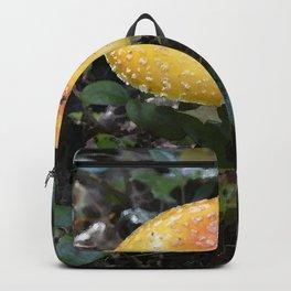 Mushroom Bitten Backpack