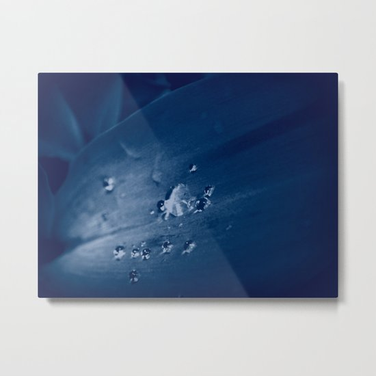 Lily White Tears Metal Print