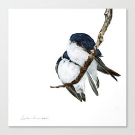 Togetherness - Tree Swallows by Teresa Thompson Canvas Print