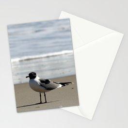 Ocracoke Seagull  1 Stationery Cards